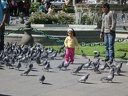 little girl surrounded by pigeons