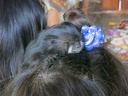 Saddleback tamarin on little girl's head